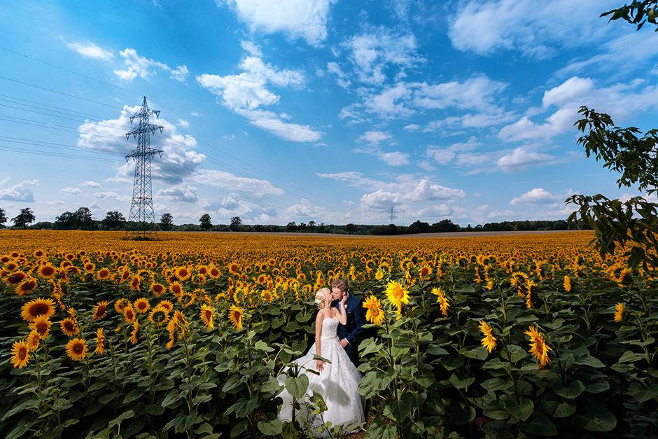 Hochzeitspaar im Sonnenblumenfeld zwischen Niemegk und Lühnsdorf