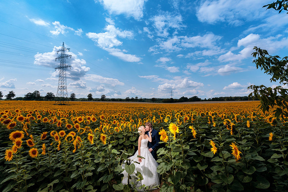 Brautpaar im Sonnenblumenfeld in Brandenburg