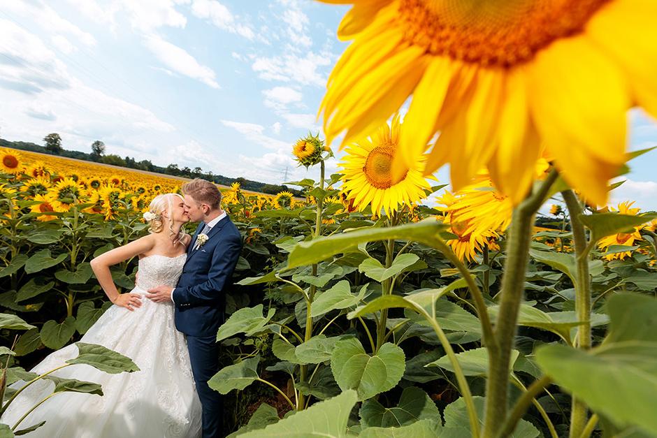 Brautpaar im Sonnenblumenfeld