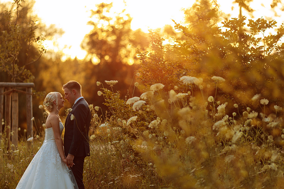 Hochzeitspaar im Abendlicht im Park von Potsdam