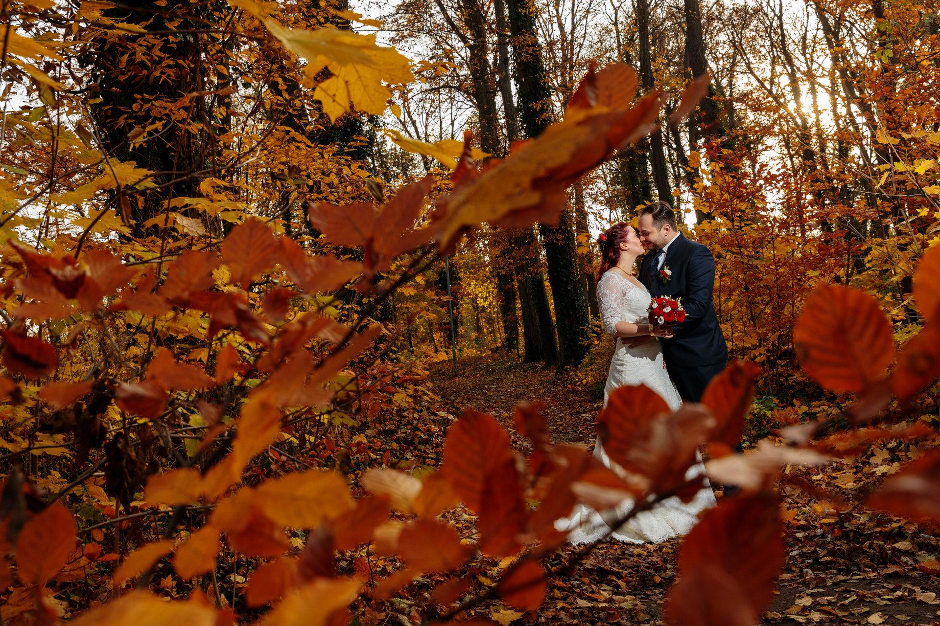 Hochzeitsfotos im Herbst im Wald Berlin