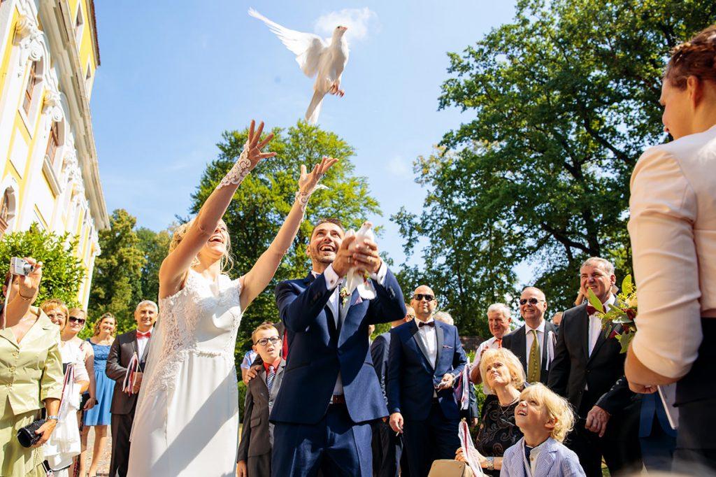 Tauben fliegen lassen auf Schloss Neschwitz