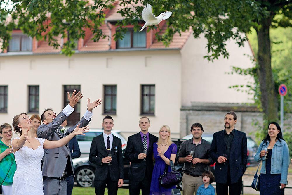 Gratulationen mit Abflug der Tauben