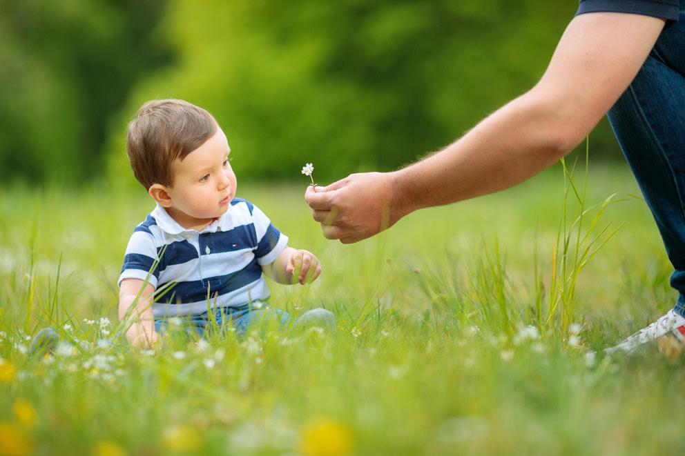 Baby beim Fotoshooting auf Blumenwiese mit Papa in Potsdam