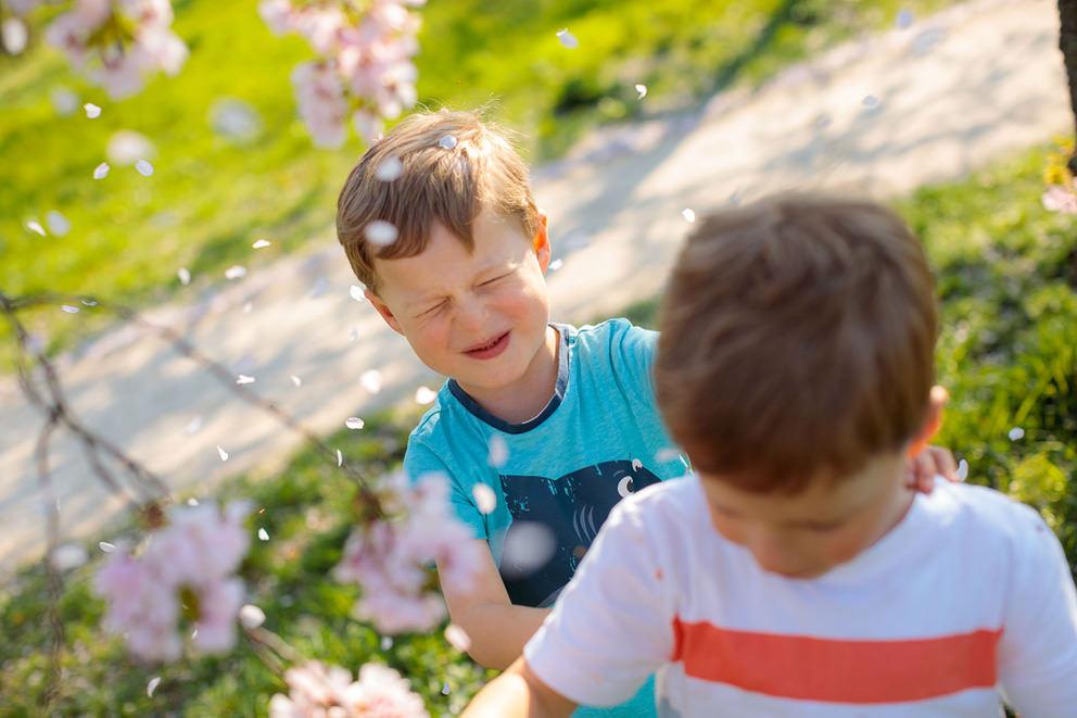 Familienfotos mit Kindern bei Kirschblüte in Potsdam