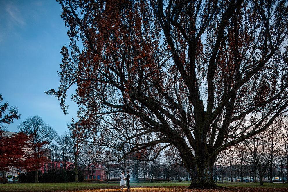 Brautpaar neben großen Baum am Bassinplatz Potsdam