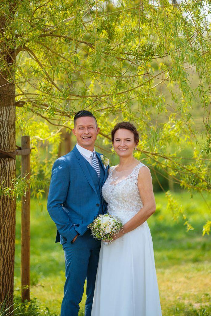 Brautpaar steht unter einem Baum auf einer Wiese
