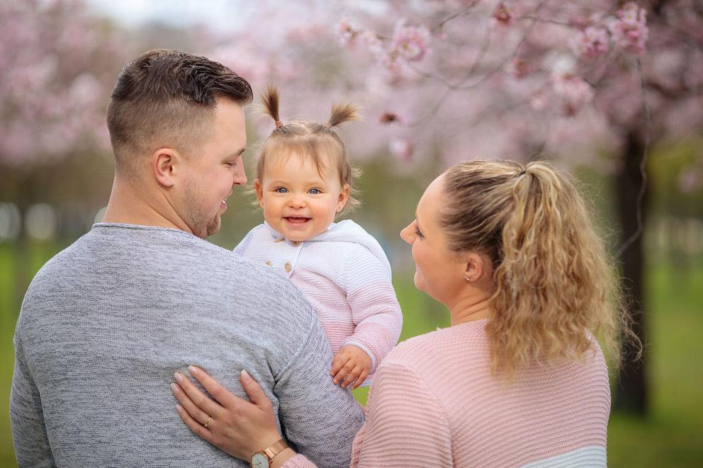 Familienbilder unter Kirschblüten in Potsdam